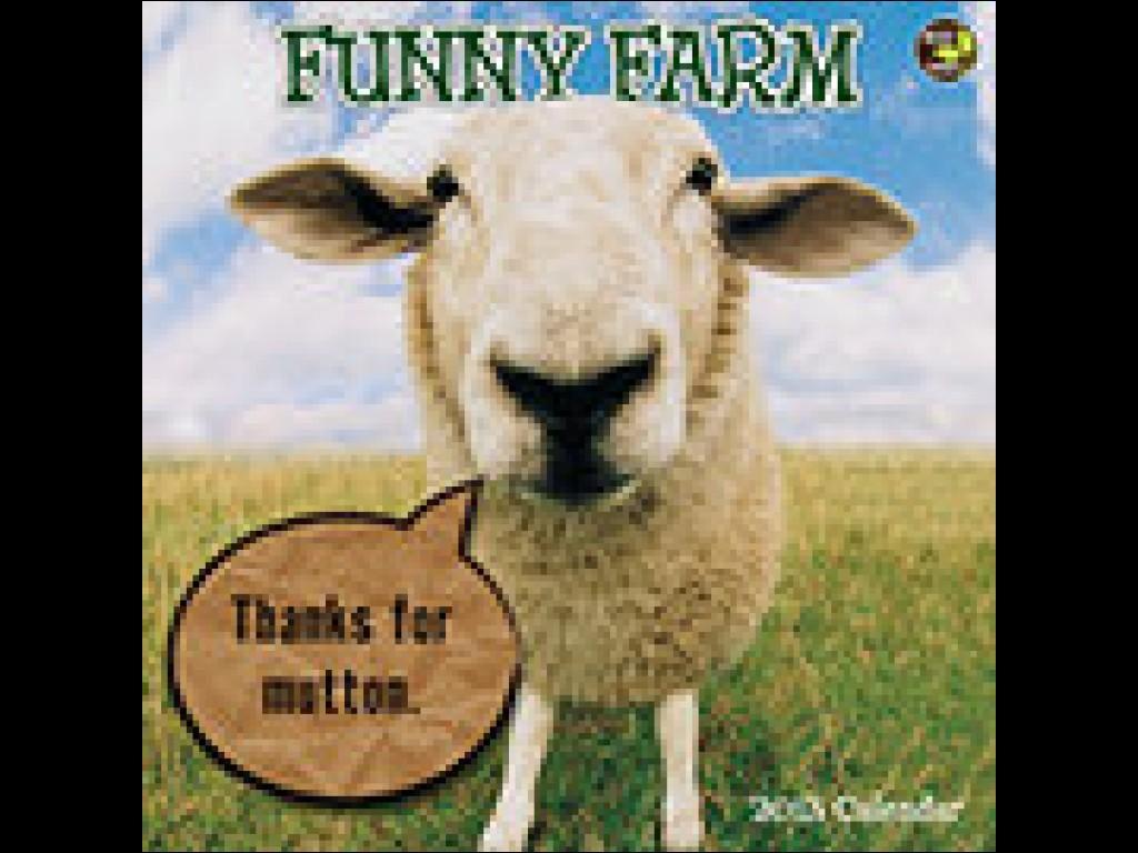 Funny Chicken Quotes Quotesgram: Funny Farm Quotes. QuotesGram