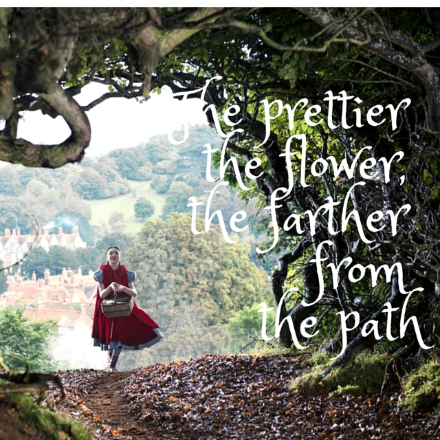 Woods Quotes: Into The Woods Musical Quotes. QuotesGram