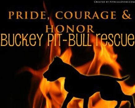 Famous Quotes About Pit Bulls Save The Pitbul...
