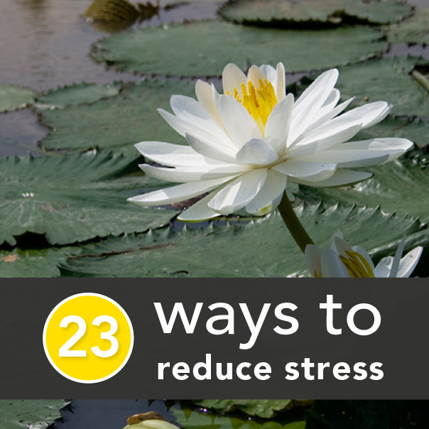 reducing stress essay