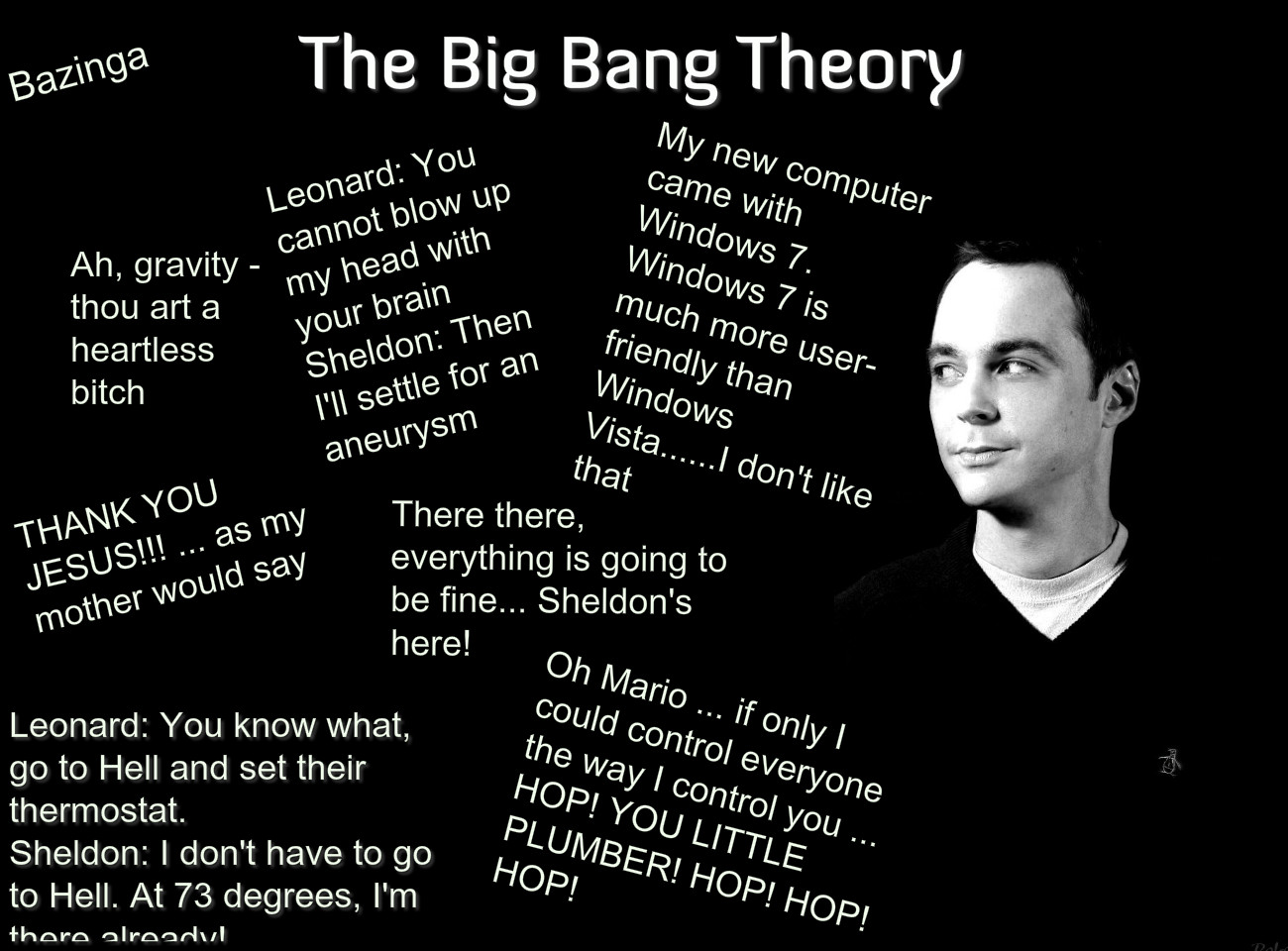 Sheldon Quotes Poster. QuotesGram