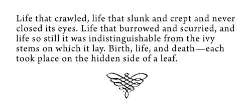 Song Of Solomon Morrison Quotes. QuotesGram