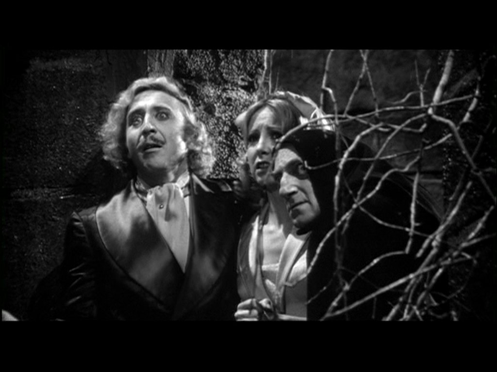 Young Frankenstein Quotes Knockers. QuotesGram