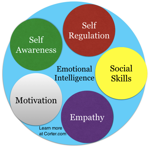 an evaluation of the five components of emotional intelligence on mr peters Michale porter's five forces of competitive position model - free theory summary and free five forces diagram in msword.