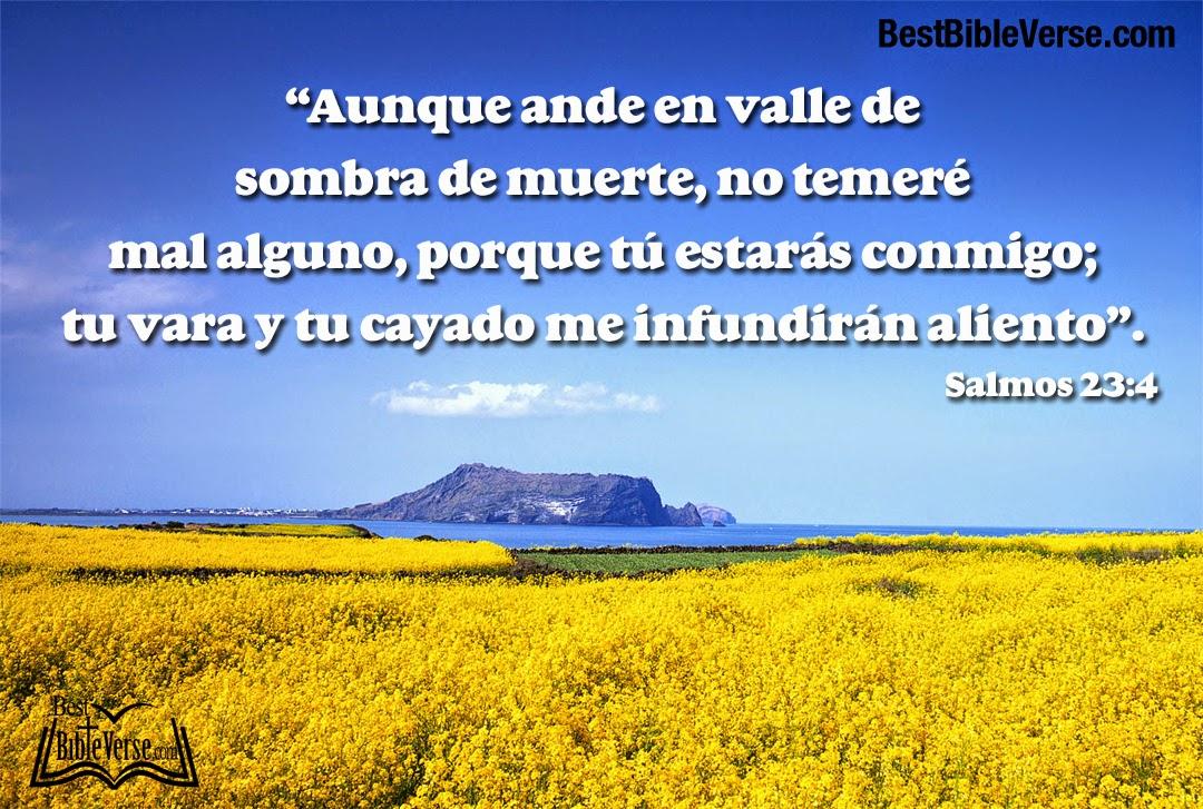 Bible Quotes In Spanish. QuotesGram