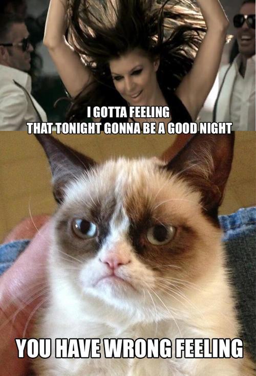 Cudlles Grumpy Cat Quotes. QuotesGram