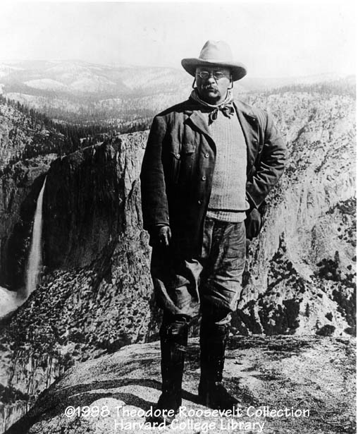 theodore roosevelt and environmental conservationism Theodore roosevelt's contributions to american political  conservationism as well as environmental protection and preservation became issues at the forefront of.