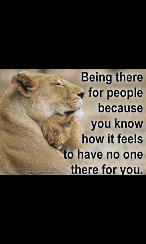 Lion And Lioness Quotes And Saying. QuotesGram