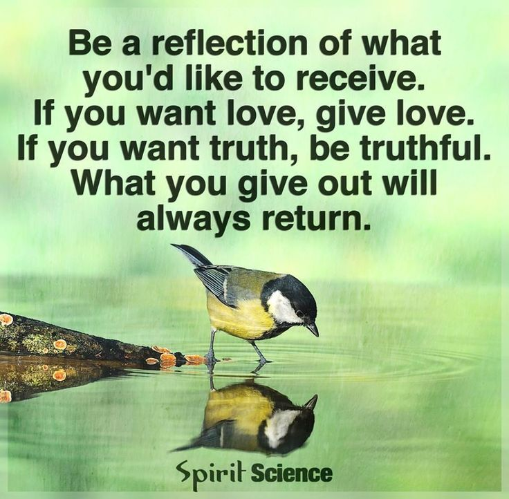 Reflection Quotes About Life: Daily Reflection Quotes. QuotesGram