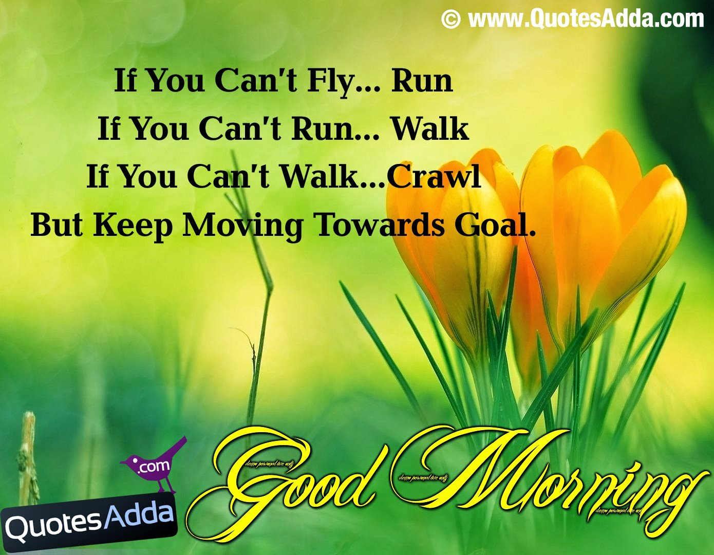 Best Good Morning Quotes: Friendship Quotes Best Good Morning. QuotesGram