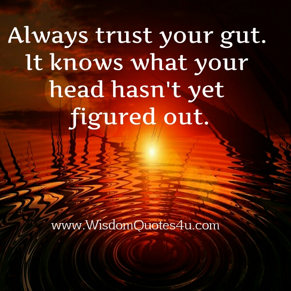 Always Trust Your Gut Quotes. QuotesGram