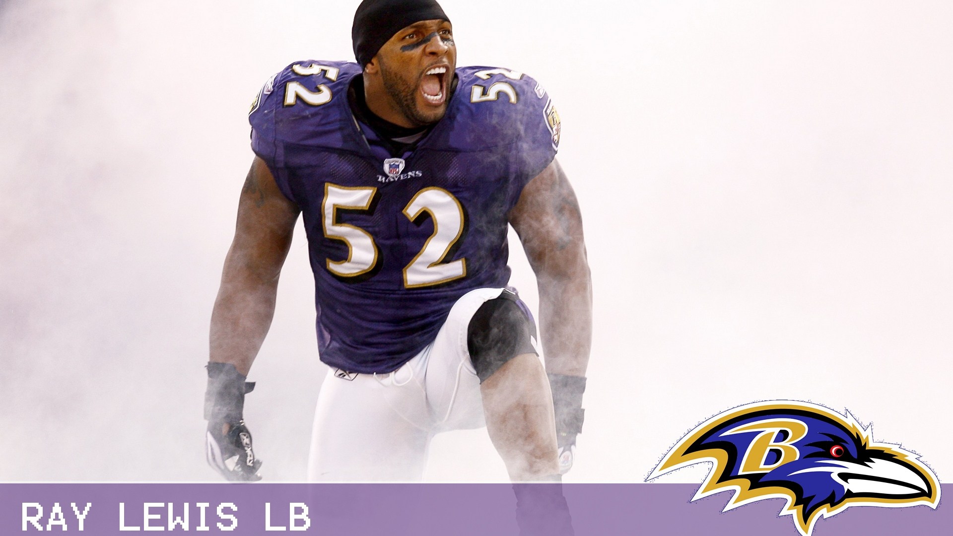 Baltimore Ravens Ray Lewis Quotes: Ray Lewis Funny Quotes. QuotesGram