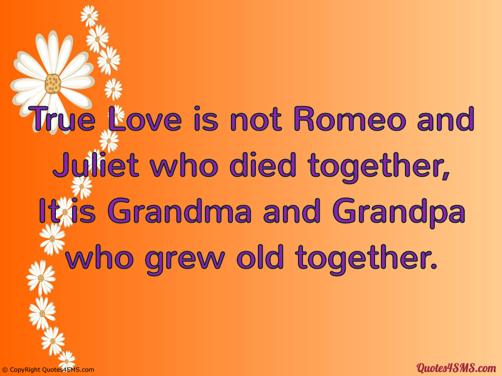 A True Love Story Essay
