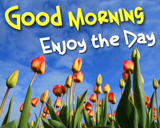 Good Morning On Facebook : Good morning facebook friends quotes quotesgram