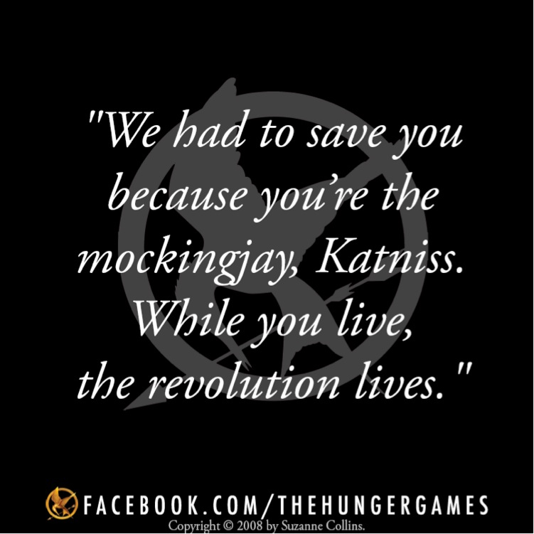 the hunger games rebellion Before the final hunger games film hits theaters, refresh your memory  their  survival has sparked a rebellion in several of panem's districts,.