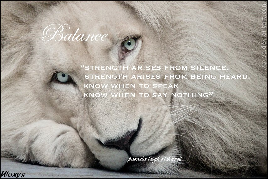 Lion Quotes And Sayings Famous Lion Quo...