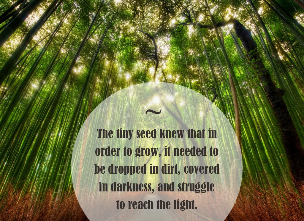 Fairy Quotes And Message. QuotesGram