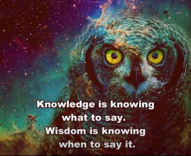 Owl Wisdom Quotes. QuotesGram