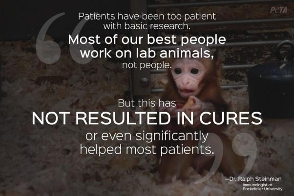 scientist on animal testing quotes quotesgram