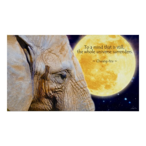 Motivational Inspirational Quotes: Inspirational Quotes Elephant. QuotesGram
