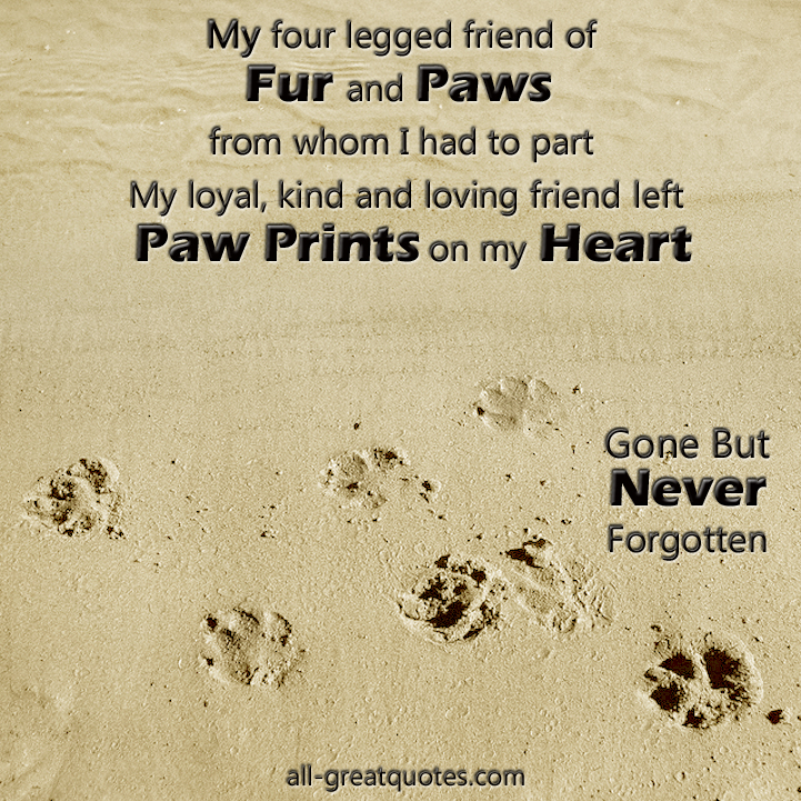 Pet Loss Poems And Quotes. QuotesGram