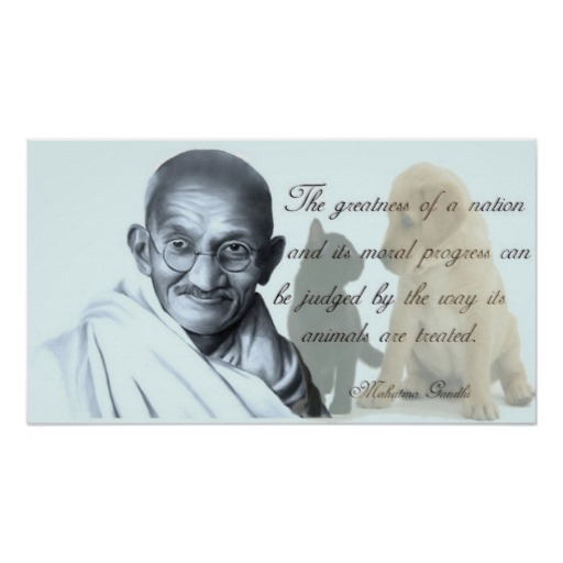 Famous Animal Rights Quotes: Animal Quotes By Gandhi. QuotesGram
