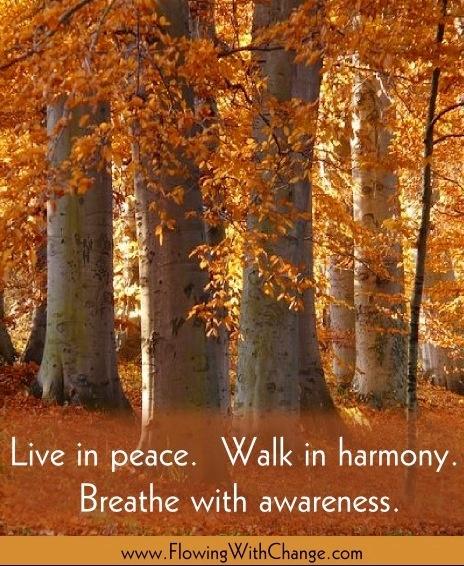 live in harmony quotes quotesgram
