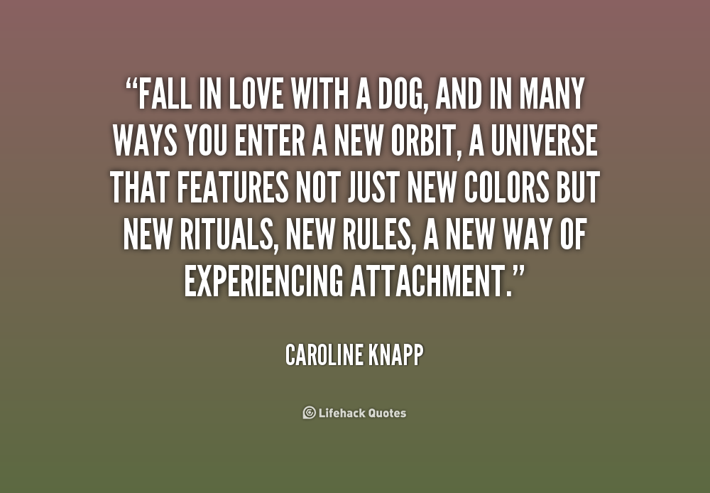 Quotes From Dogs To Owner. QuotesGram