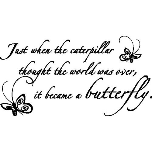 Tattoo Quotes Butterfly: Cute Quotes About Butterflies. QuotesGram