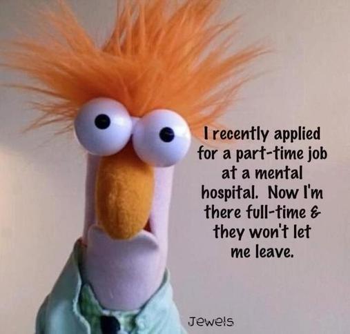 Funny Muppet Quotes. QuotesGram
