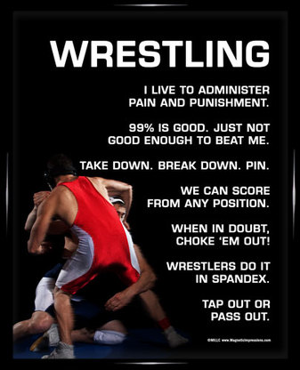 Wrestling Quotes For Posters Quotesgram