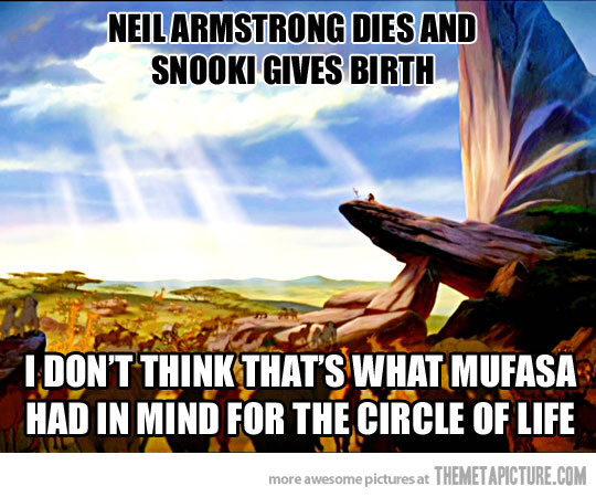 Funny Circle Of Life Meme : Lion king quotes about life quotesgram