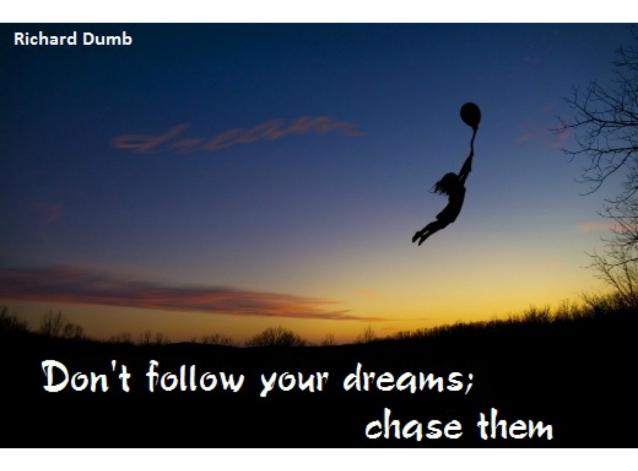 """follow your dreams 19 quotes about following your passion  """"follow your own passion—not your parents',  for your passion will lead you right into your purpose."""