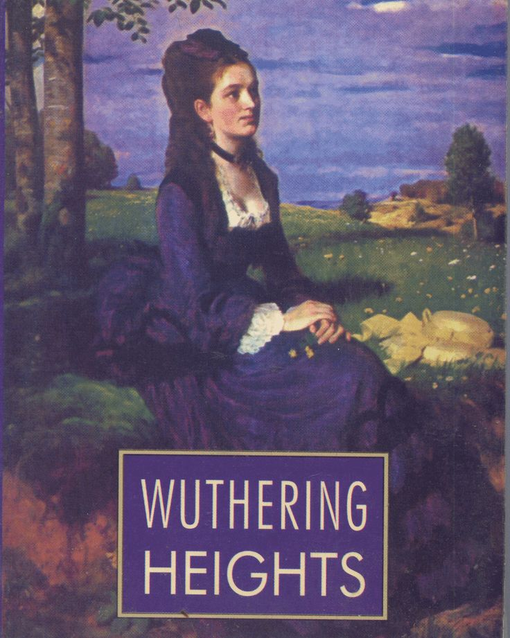 wuthering heights by charlotte bronte essay