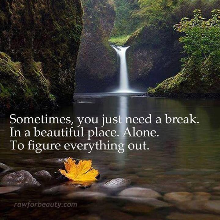 quotes serenity now quotesgram