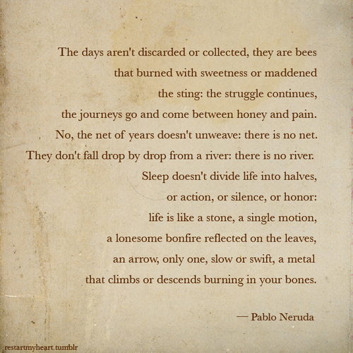 Line or lines from Pablo Neruda's poems Essay