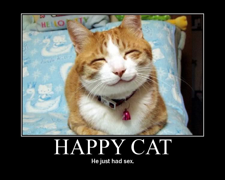 Funny Cat Mothers Day Pictures