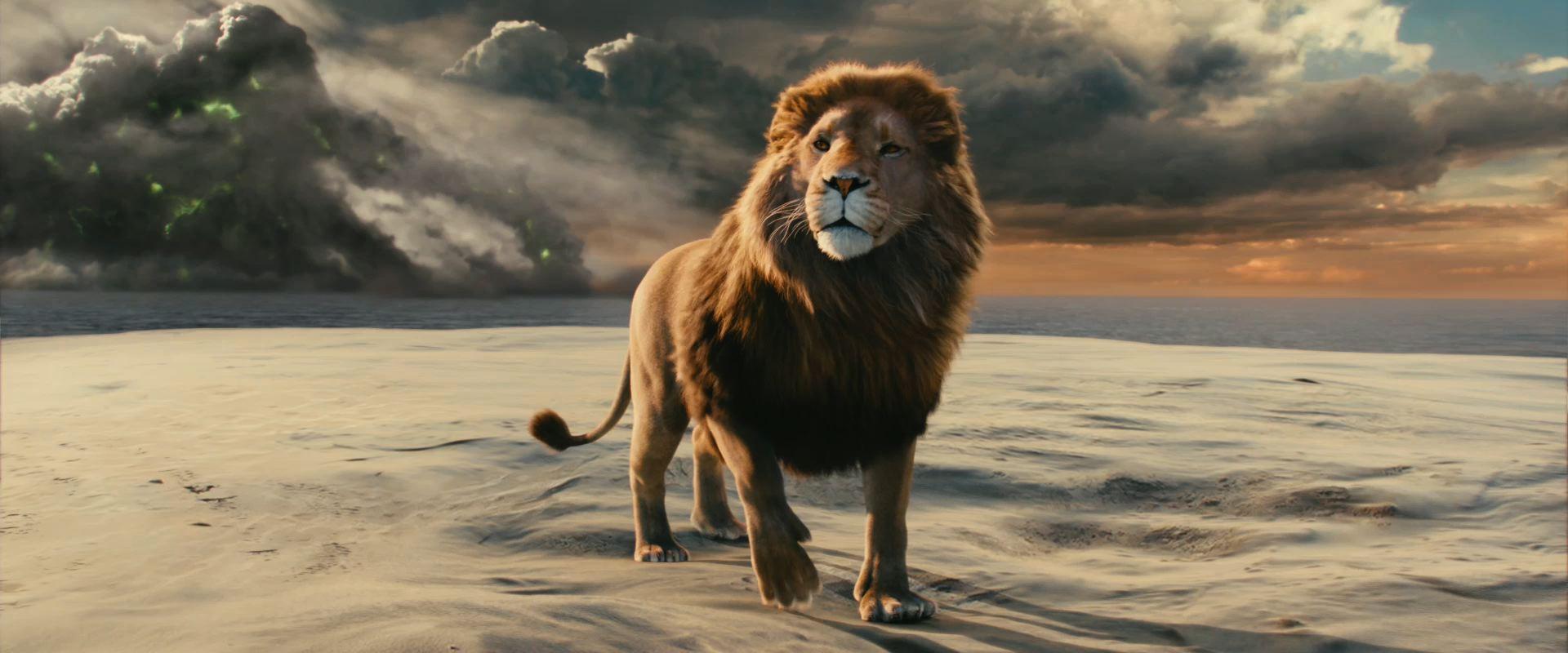 лев аслан из нарнии картинки меня