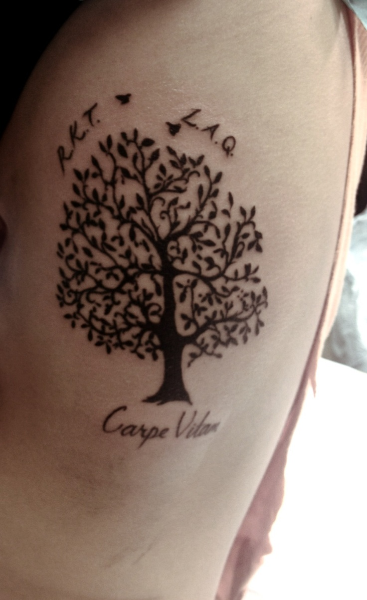 Trees birds life quotes quotesgram for What does a tree tattoo mean