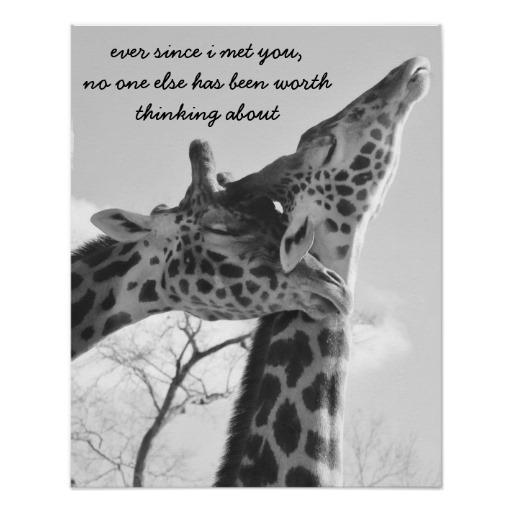 Giraffe Quotes Funny: Giraffes Quotes. QuotesGram