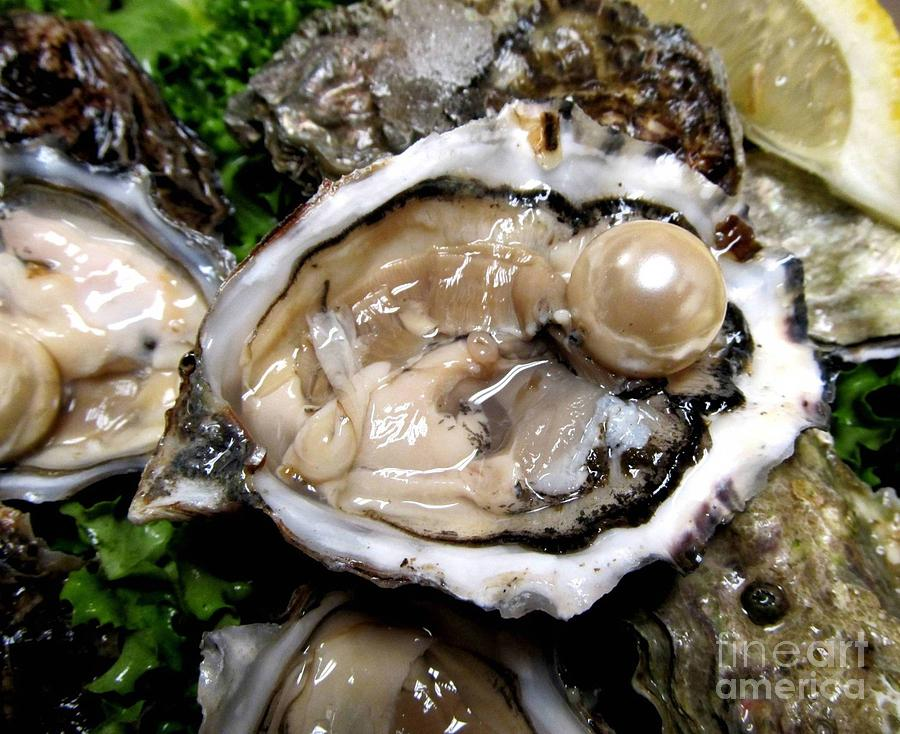 Quotes About Pearls And Oysters Quotesgram