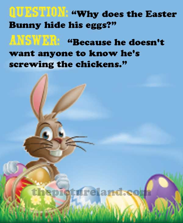 Funny Happy Easter Quotes: Easter Bunny Funny Quotes. QuotesGram