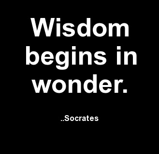 socrates look on democracy Unlike most editing & proofreading services, we edit for everything: grammar, spelling, punctuation, idea flow, sentence structure, & more get started now.