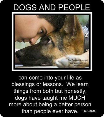 Pet Quotes Dog Friendship