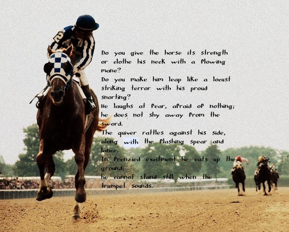 Famous Racing Horse Quotes. QuotesGram