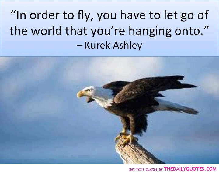 Quotes About Eagles. QuotesGram