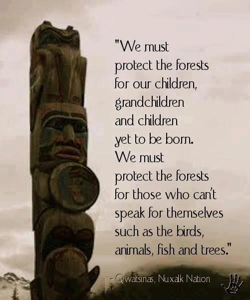 Famous Wildlife Conservation Quotes: Native American Quotes Education. QuotesGram