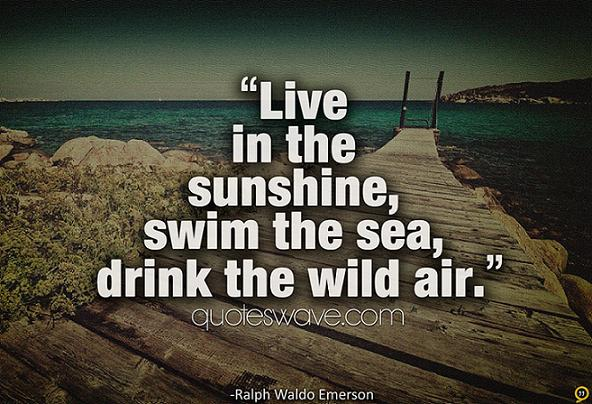 Famous Swimming Quotes. QuotesGram