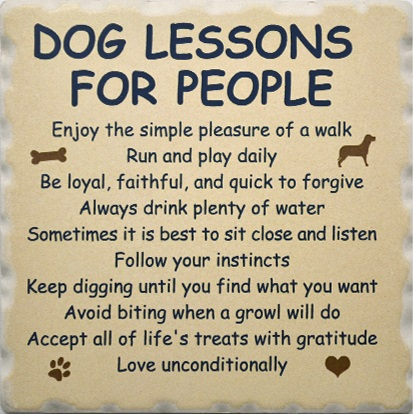 guide dogs saying good by