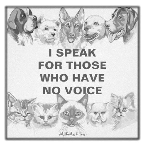 Animal Abuse Quotes By Famous People: Animal Welfare Quotes. QuotesGram
